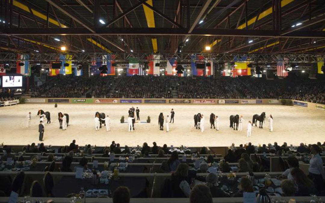 1000 extra stoelen tijdens Friese hengstenkeuring