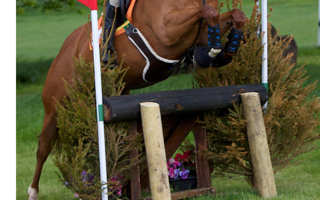 Nederland wint nations cup eventing
