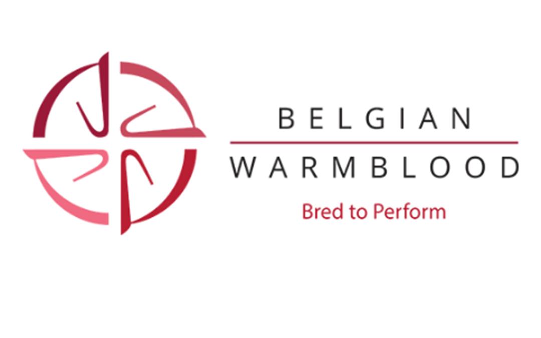 Rapporten goedgekeurde hengsten BWP online