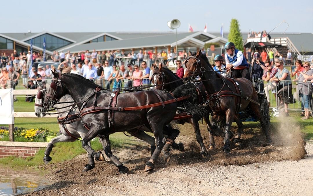 Paard & Koets gratis toegankelijk