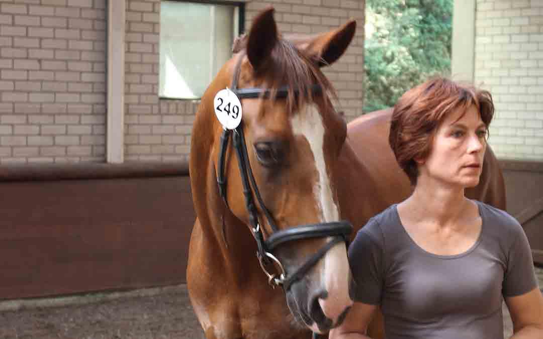 Jolanda Brugman: goed aangereden pony's zijn niet aan te slepen
