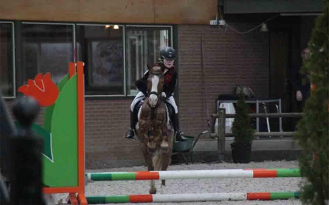 KNHS en FNRS proberen meer mensen langer te laten paardrijden