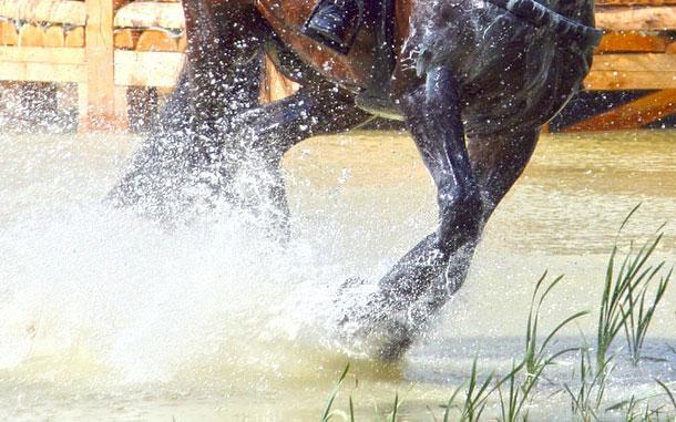 Nederlandse pony-eventers vijfde met alle kansen