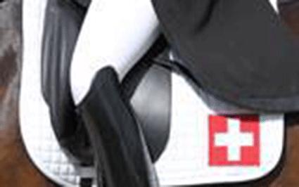 Zwitserse federatie weigert deel te nemen aan forumdiscussie