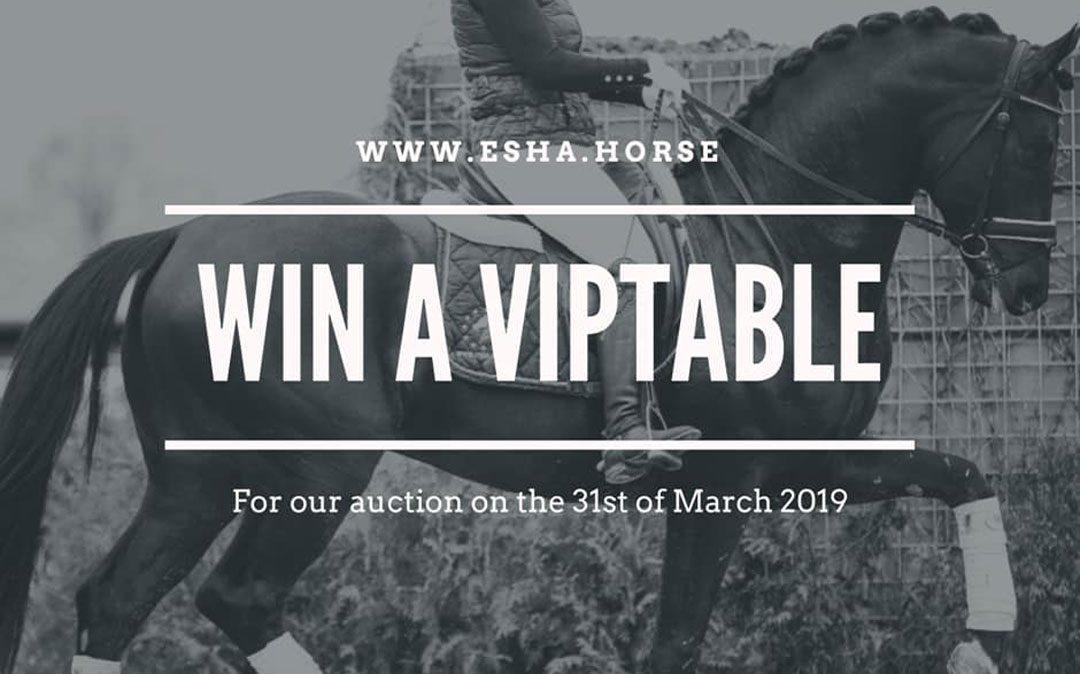 presentatie veilingpaarden www.ESHA.horse