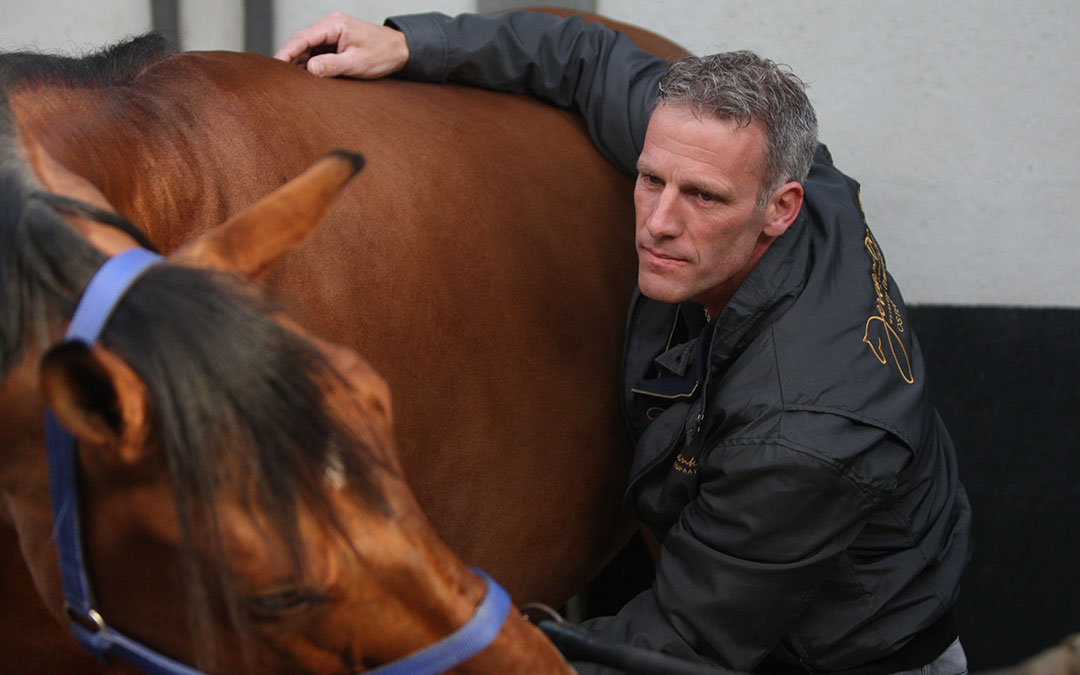 Jeroen Duenk: geef je paard de kans om voor je te willen werken