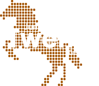 Jumping Twente Geesteren