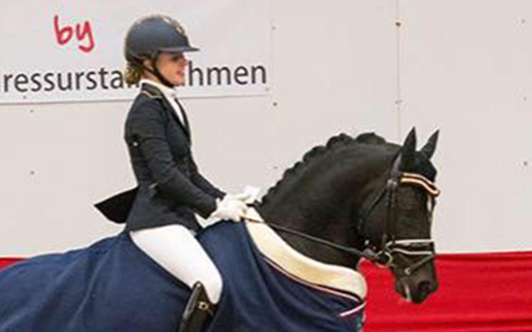 Nederlandse pony's op goudkoers