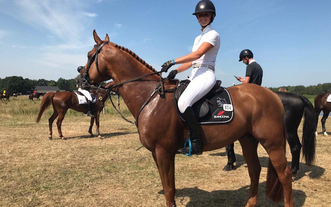 Dutch Eventing Stables gaat ook paarden veilen