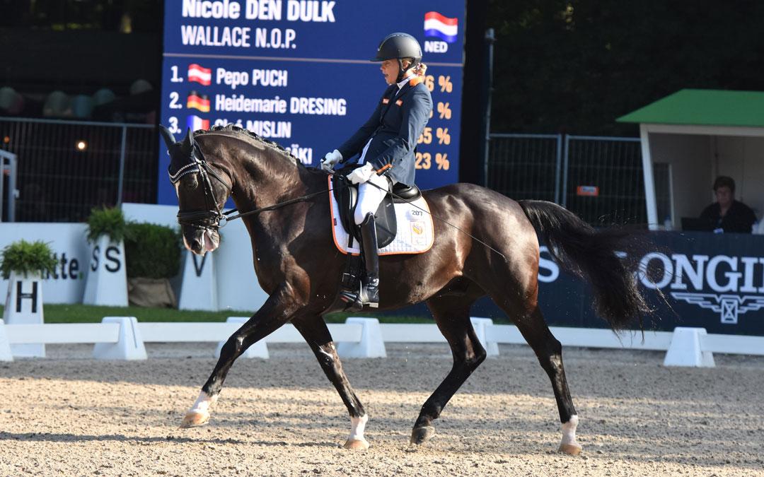 Olympische Para dressuur kwalificatie tijdens Brabantse Kampioenschappen