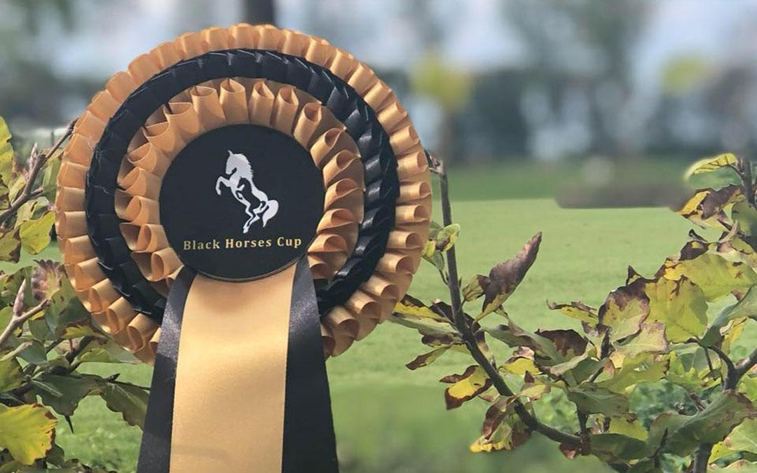 Stoeterij Black Horses start veiling dressuurpaarden