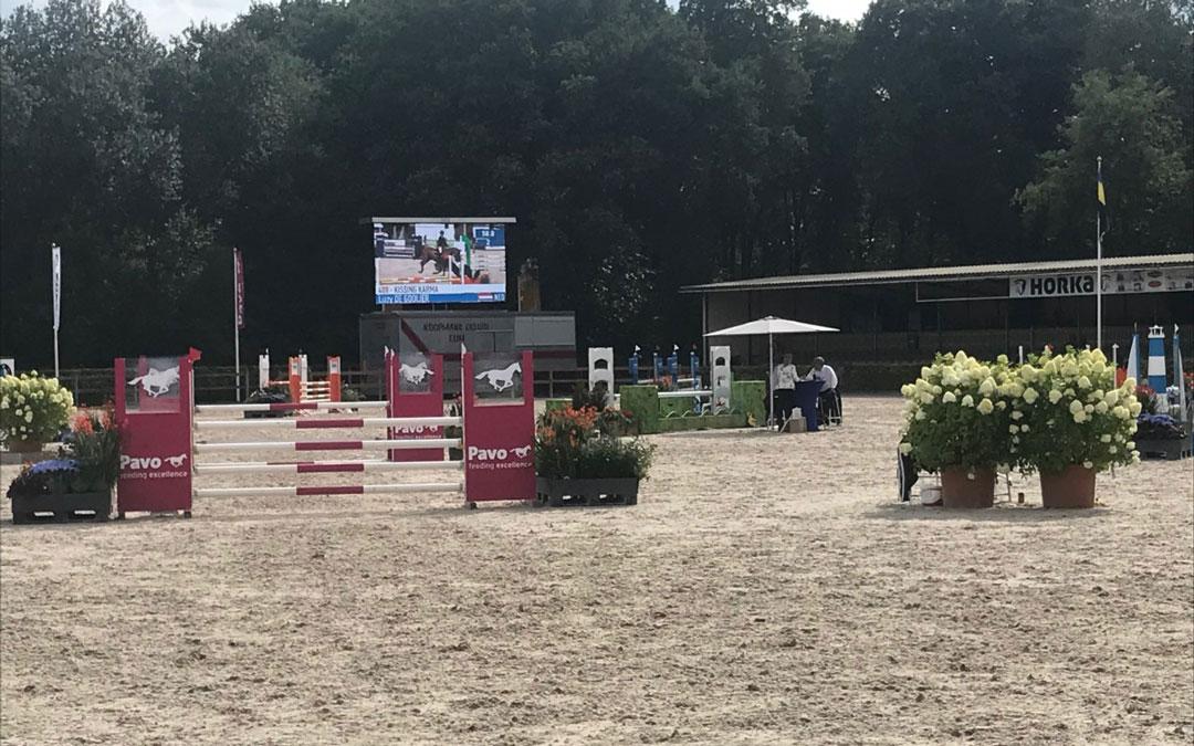 Bart Lips wint met KWPN-hengst Kaiden Blom Cup voor vierjarige paarden