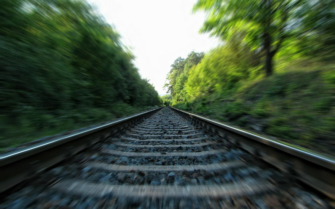 Geen treinverkeer na aanrijding met paard