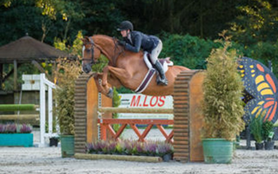 Barbara Schreuder wint Horseflight.com Open Hunter Prospect