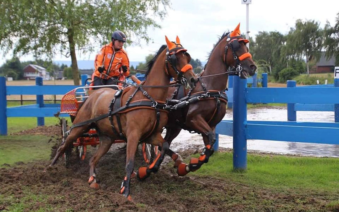 Rodinde Rutjens wint WK ponymenners