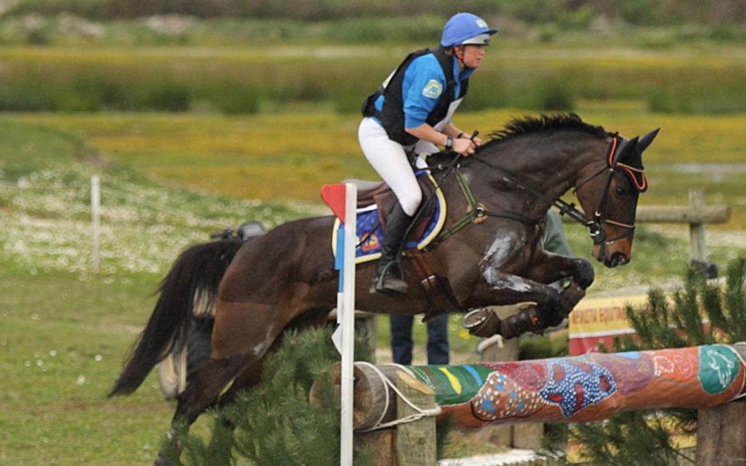 ET Auction eventingpaarden dag langer voor gereden paarden