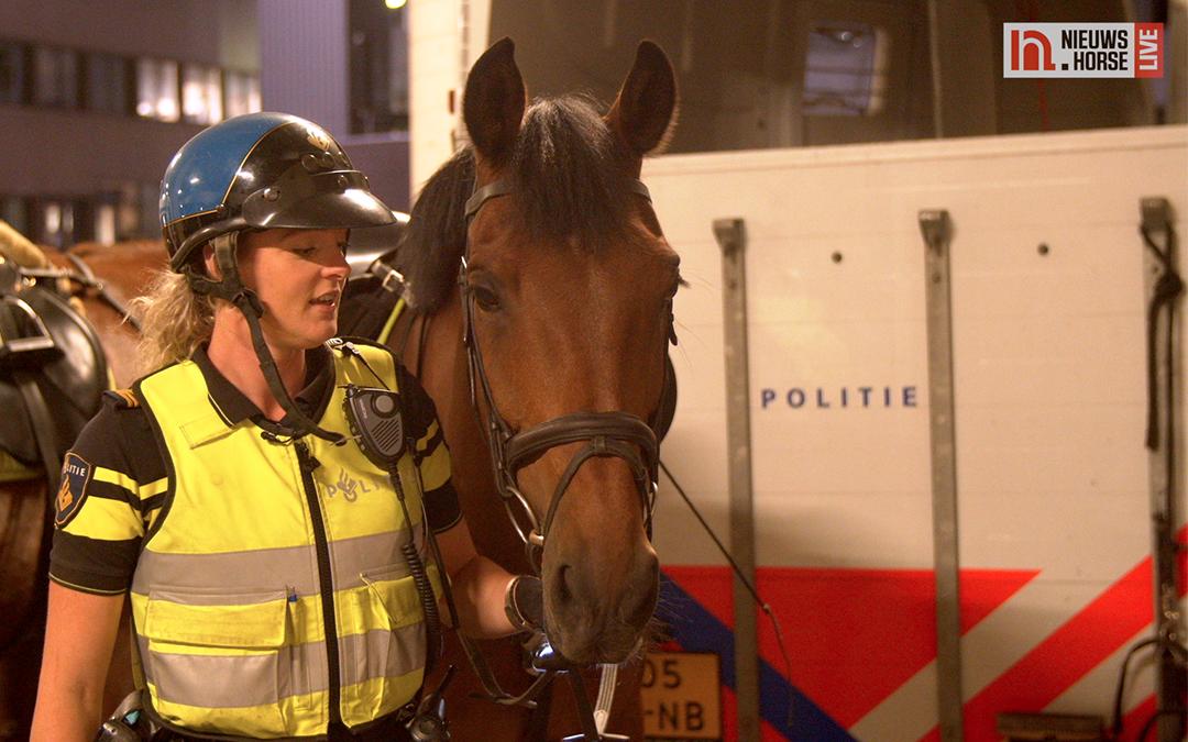 De paarden van de bereden politie