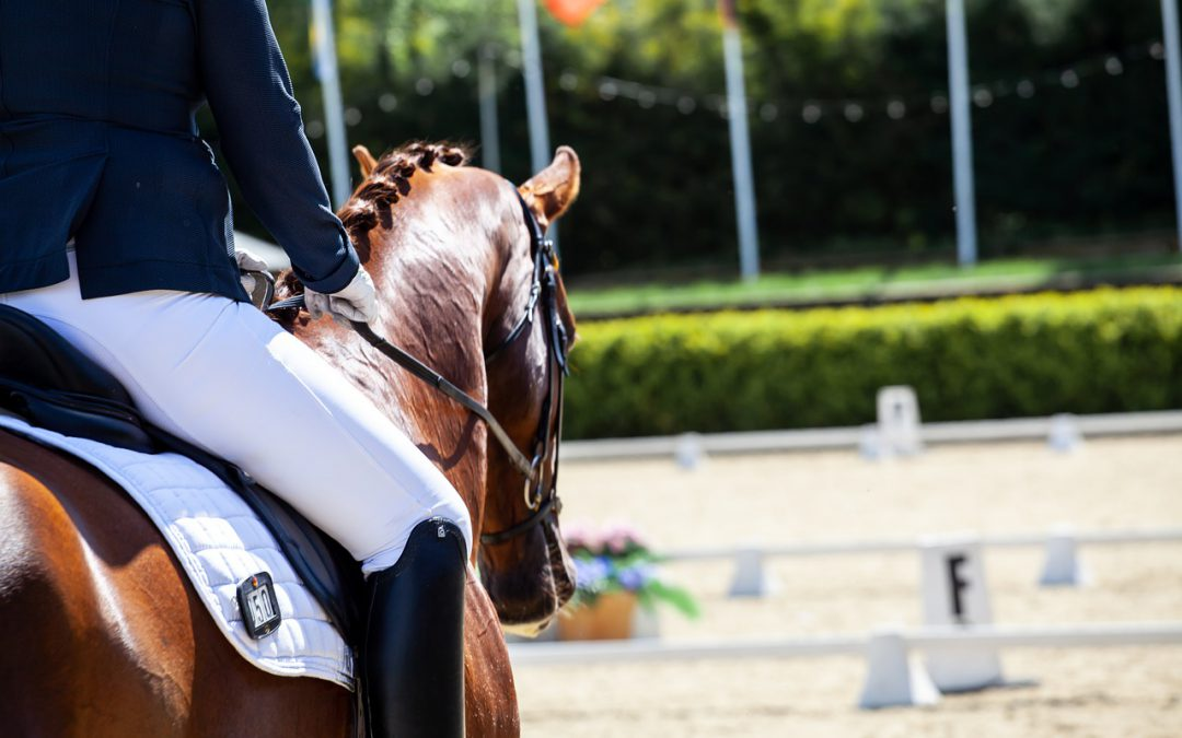 Paardensportevenementen in het buitenland afgelast vanwege Corona virus