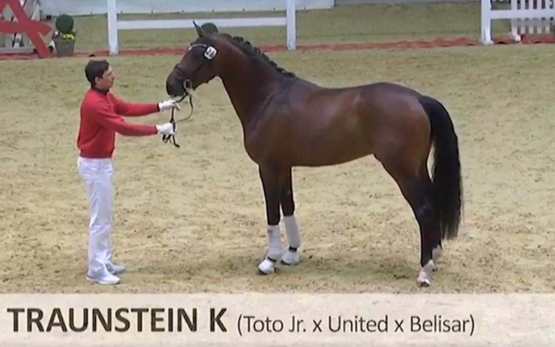 HK Oostenrijk: Toto jr-zoon en Nederlandse Untouchable kampioenen