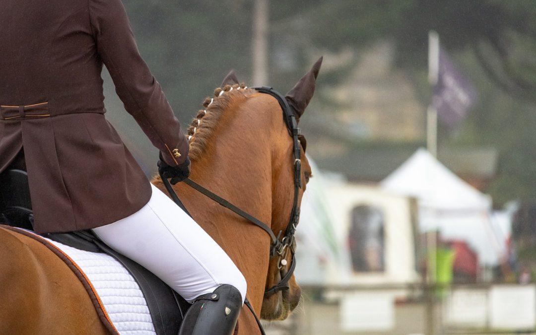 Verscherpte maatregelen paardensport