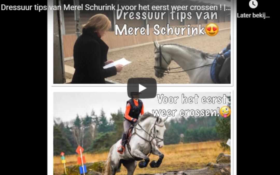 Dressuurtips van Merel Schurink | voor het eerst weer crossen | VLOG 23*