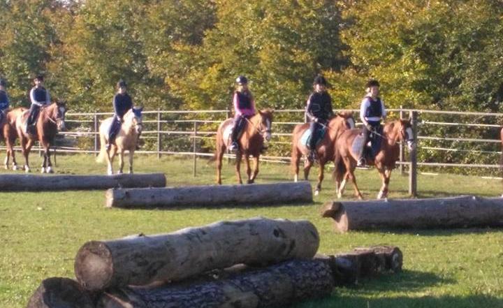 Maatregelen paardensport vanaf 19 mei