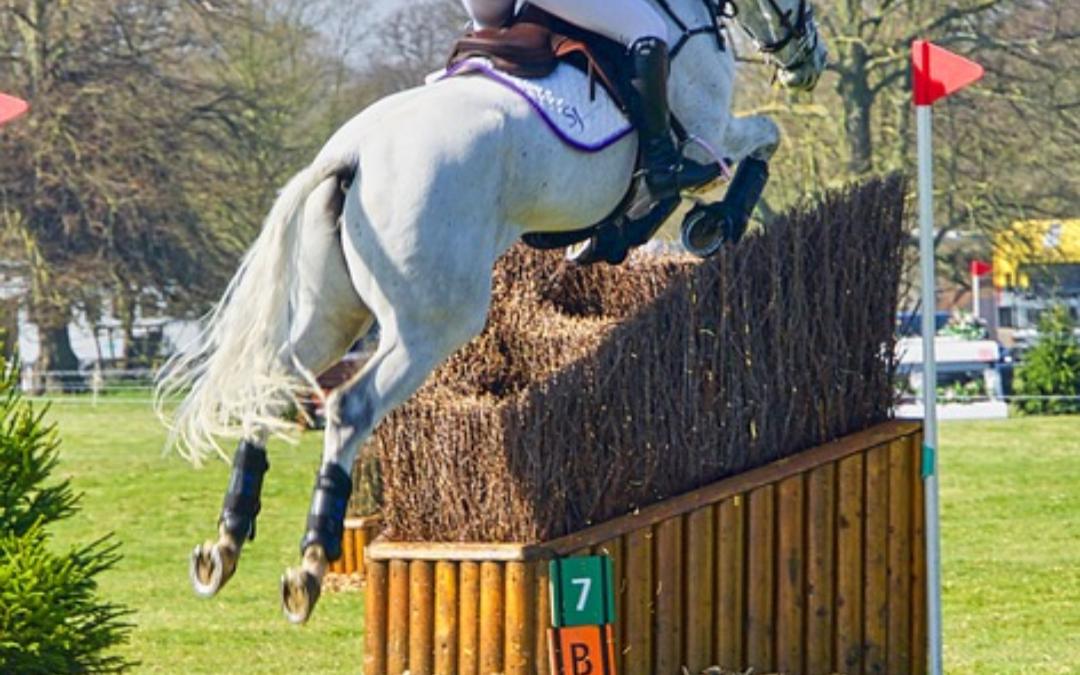 LIVESTREAM Finale jonge eventing paarden
