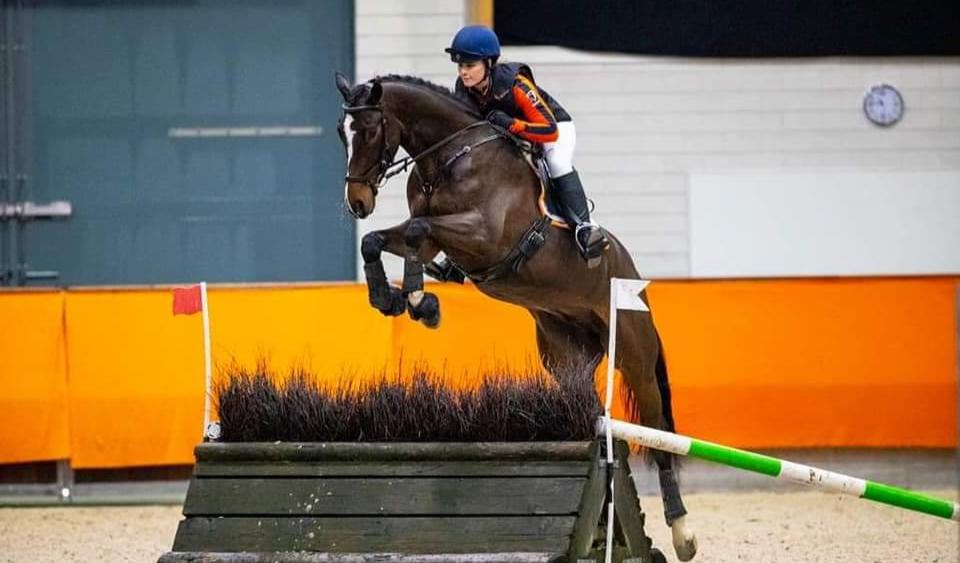 Re-Live 4 en 5 jarige eventing paarden in Renswoude
