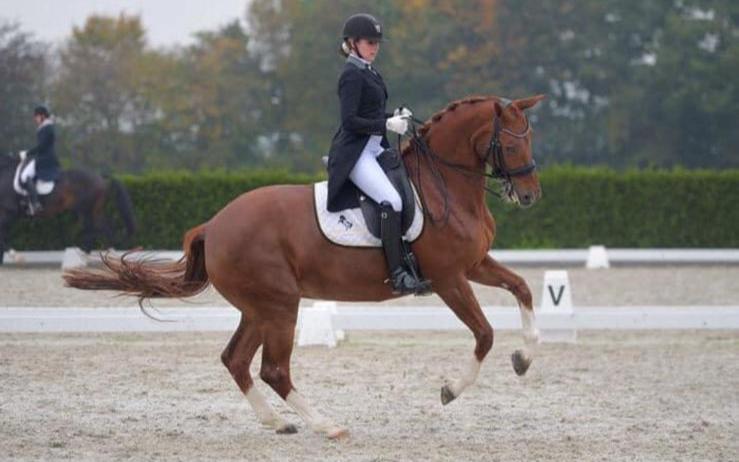 Marianne van der Vorm neemt afscheid van haar Grand Prix-paard