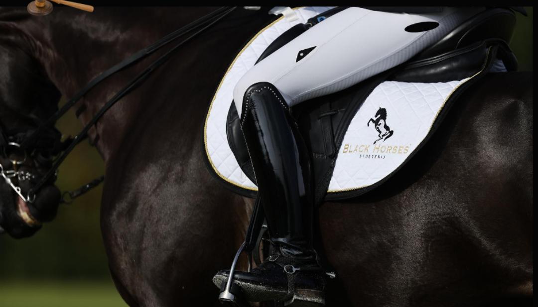 Veterinaire gegevens beschikbaar van Black Horses paarden