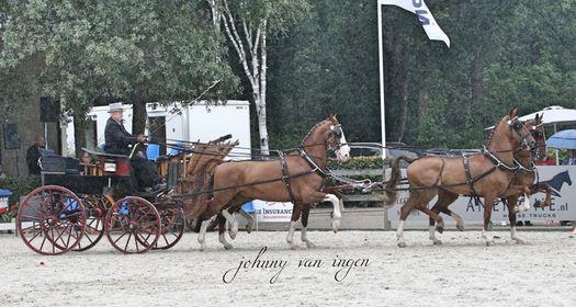 Met Dirk Mekkes (82) uit Marum is een tuigpaardenman in hart en nieren heengegaan