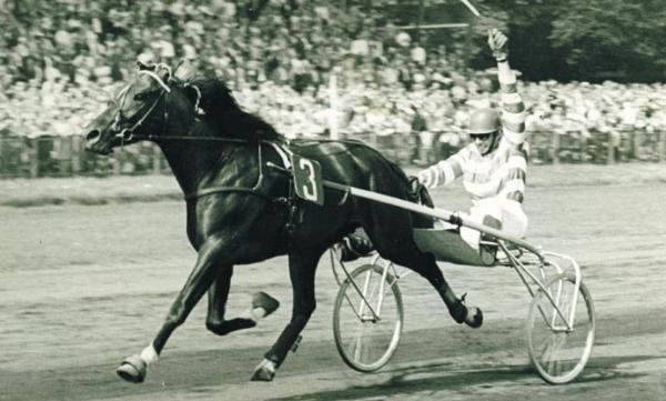 Voormalig pikeur en paardentrainer Jan Wagenaar (83) overleden