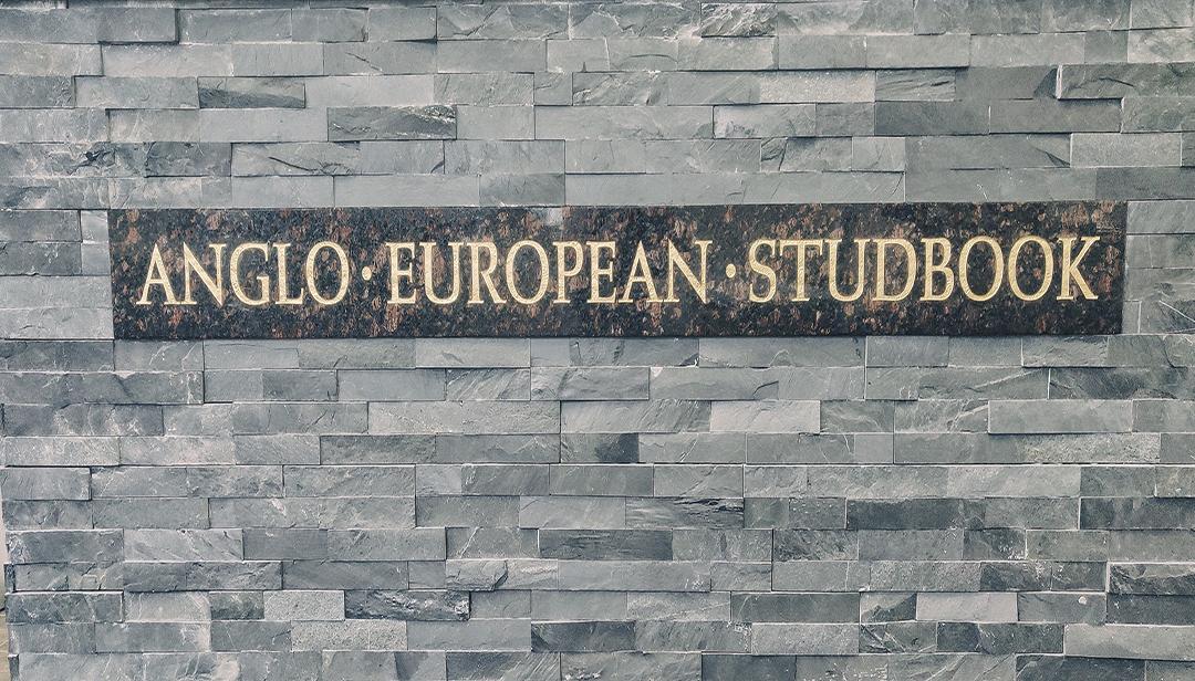 Vacature Anglo European Studbook