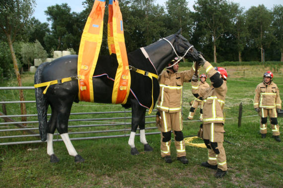 Reddingsactie bij paard in nood door Horse Rescue Team