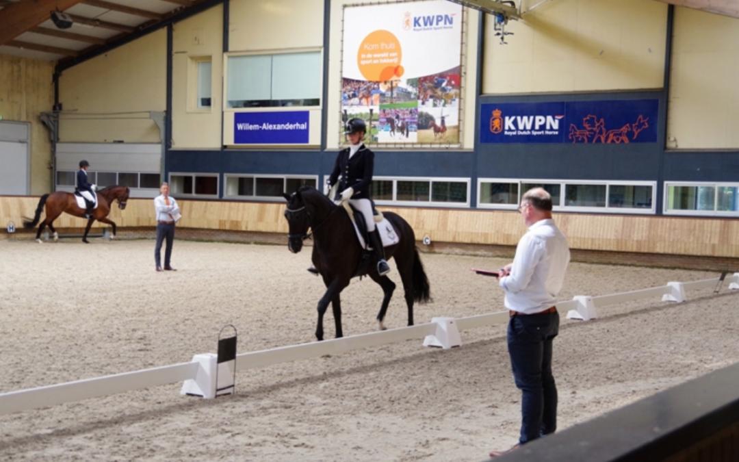 Dream Boy-dochter naar 85,5 punten in IBOP Beilen