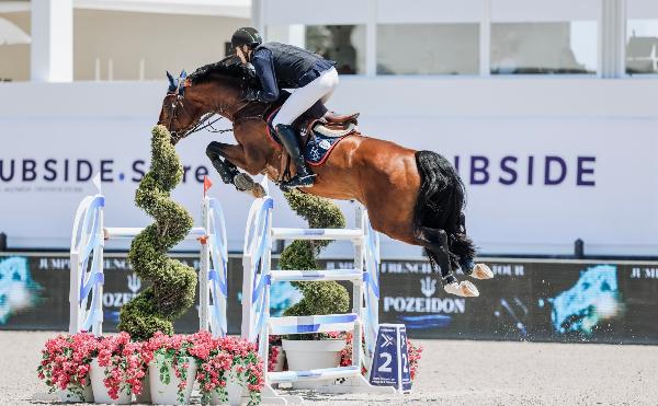 Nederlandse paarden voorop in Frankrijk