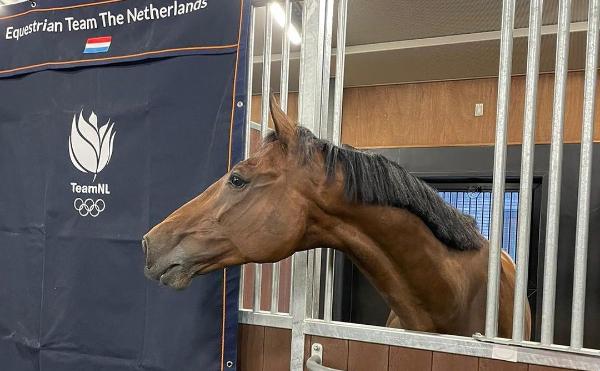 Andrew Heffernan: met de paarden gaat het prima