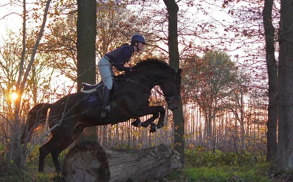 Janneke Boonzaaijer op kop in competitie jonge eventingpaarden