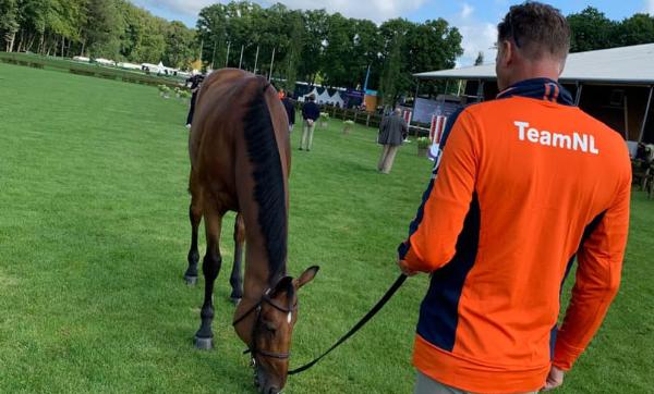 Nederlandse springpaarden 'fit to compete'